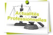 Les attentes sociales vis à vis des mesures de protection juridique - Etude GESTO Une fabrication sociale : la protection juridique (Décembre 2018)